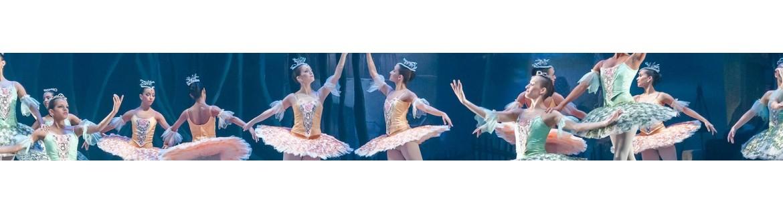 Costumi Danza Classica - Tutù per Adulti e Bambina