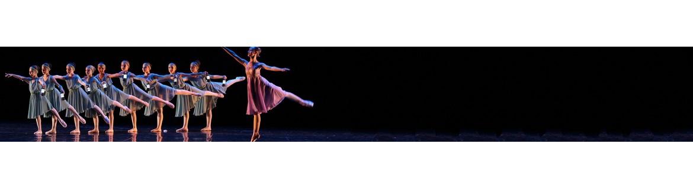 Tutu per bambina - Costumi danza classica